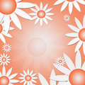 Free White Daisies On An Orange Background Royalty Free Stock Images - 7829919