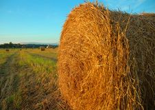 Free A Stack Of Hay Stock Images - 7820874