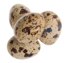 Four Quail Eggs In Pyramid Stock Image