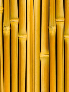 Free Tree A Bamboo Trunks Stock Images - 7824514