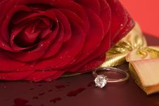 Free Valentine S Day Royalty Free Stock Images - 7824659