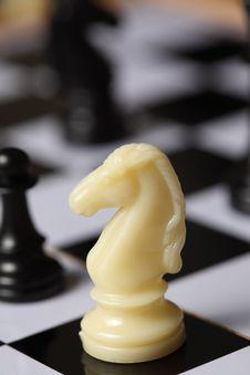 Free Chess White Knight Stock Photos - 7825323