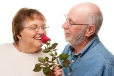 Free Happy Senior Couple With Red Rose Royalty Free Stock Photo - 7826505