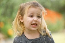 Blonde Little Girl In A Gray Sweater Stock Images