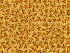 Free Yello Roses Stock Photos - 7827903