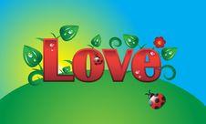 Free Love Ladybird Stock Photography - 7828232
