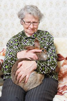 Free Grandmother With Bunny Stock Images - 7828254