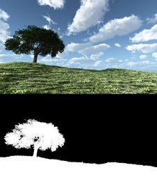Free Alone Tree With Clouds Stock Photo - 7828270