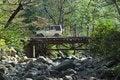 Free Forest Bridge. Stock Photo - 7830300