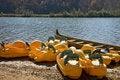 Free Paddle Boats Stock Image - 7832811