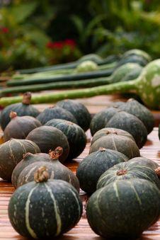 Free Pumpkins Stock Image - 7831401