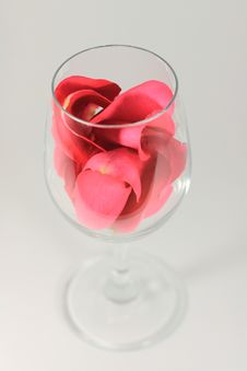 Free Valentines Wine Stock Images - 7831524