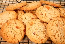 Buttery, Brittle, Candy Bit Cookies Stock Images