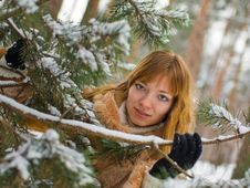 Free Winter Girl Royalty Free Stock Image - 7833506