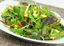 Olive Oil Dressed Salad Stock Photo