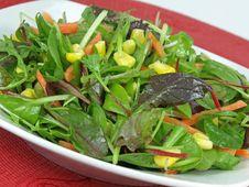 Free Salad Royalty Free Stock Photo - 7833835