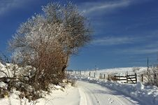 Free Snow Detail Stock Photography - 7834632