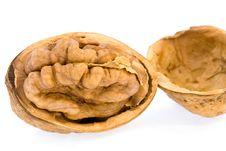 Free Walnuts  On  Isolated Royalty Free Stock Photo - 7834945