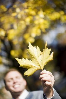 Man Holding Leaf Stock Photo