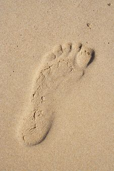 Free Foot-print In Sand Royalty Free Stock Photo - 7838145