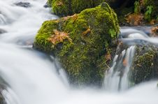 Free Water Flowing Down A Creek Closeup. Royalty Free Stock Photo - 7838425