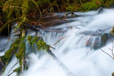 Free Small Creek In The Gorge Stock Photos - 7838453