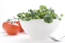 Free Fresh Natural Salad Bowl Tomato Lettuce Onion Stock Image - 7838701