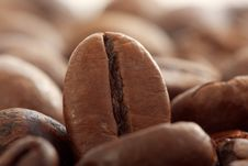 Free Coffee Beans Royalty Free Stock Image - 7839456