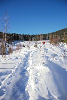 Free Snow Path Stock Photos - 7841663