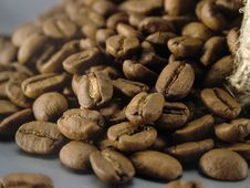 Free Sack And Coffee Beans Stock Image - 7842751