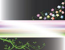 Free Flower Stock Image - 7843181