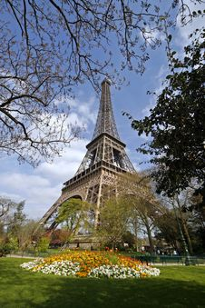 Free Eiffel Tower Paris Stock Image - 7847101
