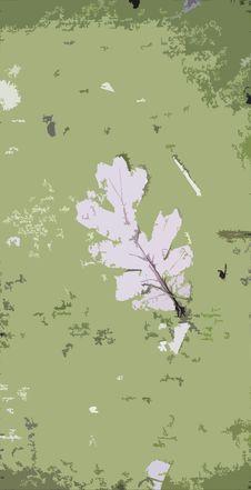 Free Leaf Background Stock Photo - 7847440