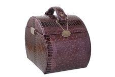 Free Violet Handbag Stock Images - 7847934
