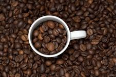 Background With White Cup And Coffee Beans Stock Photography
