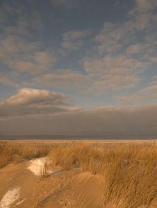 Free Sand Dune On Beach Royalty Free Stock Photos - 7849408