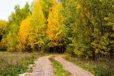 Free A Small Road In The Forest Stock Image - 78498801