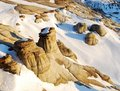 Free Hoodoos In Different Shapes Royalty Free Stock Photography - 7853977