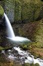 Free Ponytail Falls Stock Photo - 7854050
