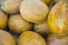 Free Fresh Melons On Croatian Market Royalty Free Stock Photos - 7850308