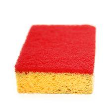 Free Sponge Stock Images - 7850684