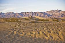 Tracks Across The Dunes Stock Photo