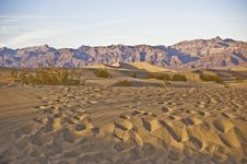 Free Tracks Across The Dunes Stock Photo - 7851540