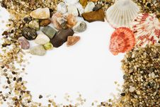 Free Cockleshells Royalty Free Stock Images - 7853599