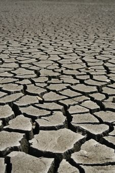 Free Cracked Earth, Soil Texture Royalty Free Stock Photography - 7854157
