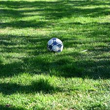 Free Ball In Grass Royalty Free Stock Photos - 7854188