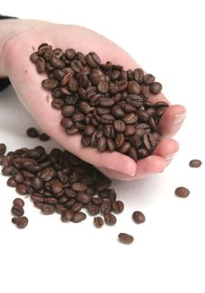 It Is A Lot Of Grains Of Coffee Lay In Hands Royalty Free Stock Images