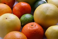 Free Different Fresh Citrus Fruit Stock Photography - 7854792