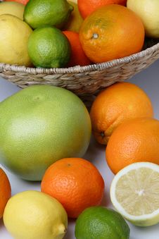 Free Different Fresh Citrus Fruit Royalty Free Stock Photos - 7854798