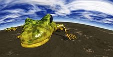 Free Ecological Abstract With Frogs Stock Photography - 7855532
